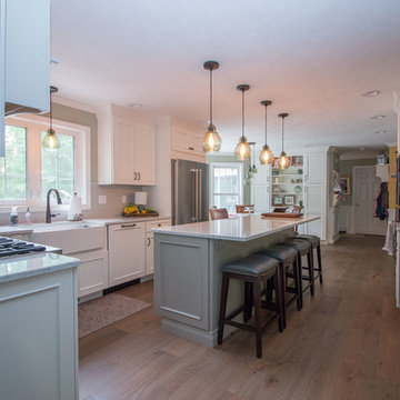 Classic, Traditional & Transitional White Icing kitchen remodel