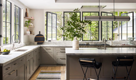 Kitchen of the Week: Leafy Views and Smart Storage