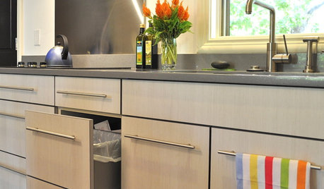 Ecofriendly Kitchen: Healthier Kitchen Cabinets