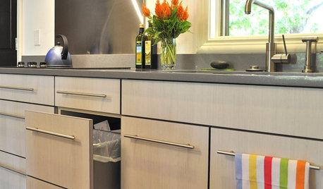 Ecofriendly Kitchen: Healthier Kitchen Cabinets
