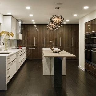 Große Moderne Küche in U-Form mit Unterbauwaschbecken, flächenbündigen Schrankfronten, dunklem Holzboden, Kücheninsel, weißen Schränken, Quarzit-Arbeitsplatte, Küchenrückwand in Grau, Rückwand aus Spiegelfliesen und Elektrogeräten mit Frontblende in Baltimore