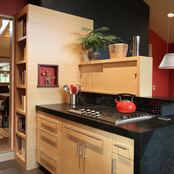Island with cooktop and bookshelves
