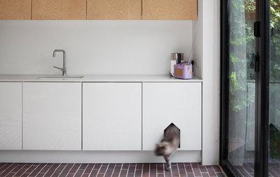 Her er 8 indretninger, der passer til både dig og din kat