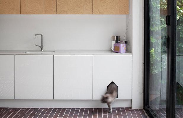コンテンポラリー キッチン by Dominic McKenzie Architects