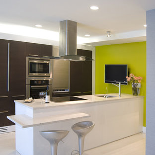 Example of a trendy galley kitchen design in DC Metro with paneled appliances, flat-panel cabinets, dark wood cabinets and a single-bowl sink