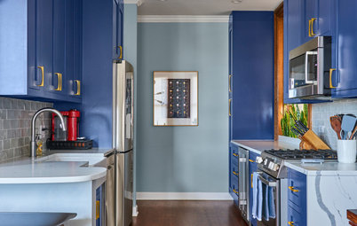 Kitchen Renovation: Are Coloured Cabinets Trending?