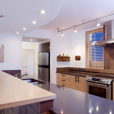 Trendy galley kitchen photo in Denver