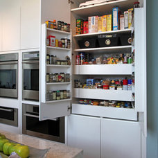 contemporary pantry by Eurotech Cabinetry Inc.