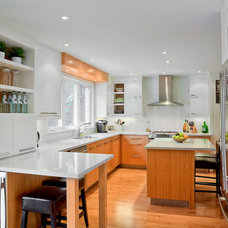 Contemporary Kitchen by Oakville Kitchen Designers