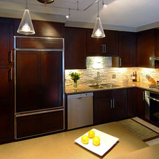 Contemporary Kitchen by Tracy Leah Interior Design