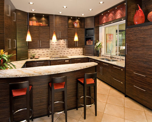 Ebony cabinets houzz for Amazing kitchen designs