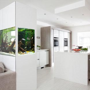 Moderne Küche mit flächenbündigen Schrankfronten, weißen Schränken und Küchengeräten aus Edelstahl in Sonstige