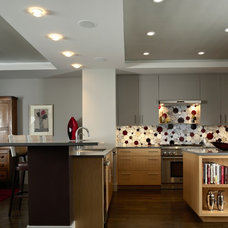 Contemporary Kitchen by LiLu Interiors
