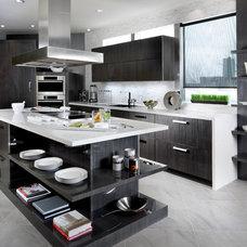Contemporary Kitchen by Paris Kitchens