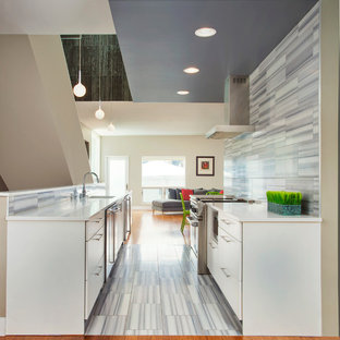 Trendy galley open concept kitchen photo in Chicago with flat-panel cabinets, white cabinets and gray backsplash