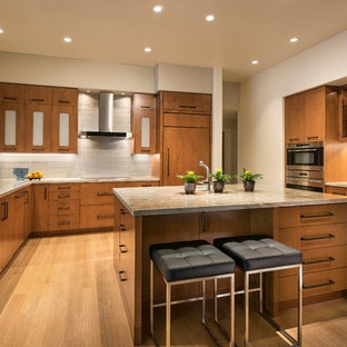 Contemporary Kitchen Remodel View #1