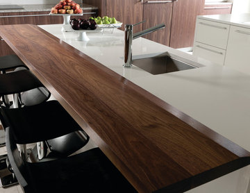Contemporary Kitchen with Wood Top