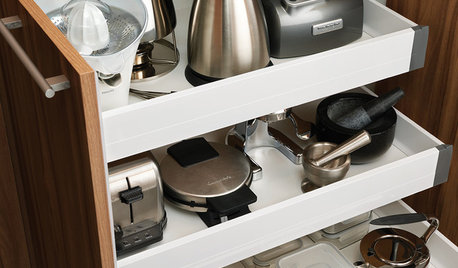 Kitchen Appliances On Houzz: Tips From The Experts