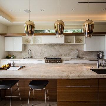 Contemporary Los Angeles Design Build