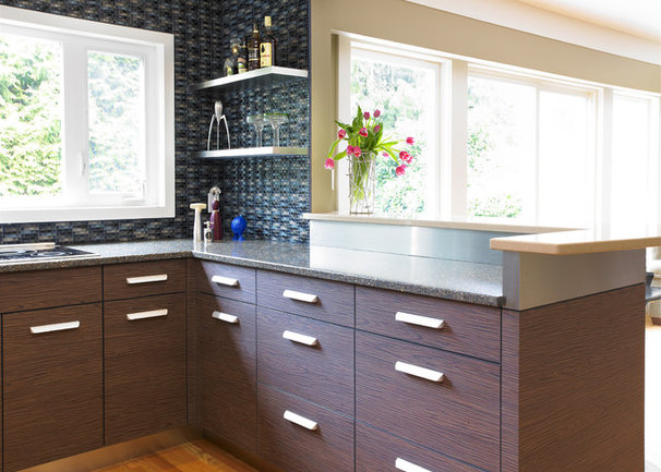 Modern kitchen by the sky is the limit design for Cabinets for less
