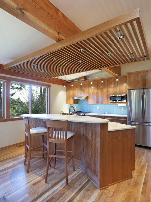 Suspended Ceiling | Houzz