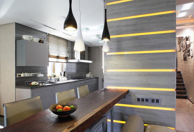 Contemporary Kitchen by Elena Scherbakova