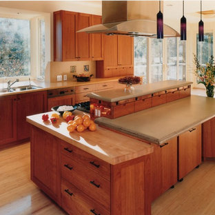 Example of a kitchen design in San Francisco