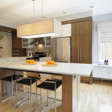 Contemporary Kitchen by Denca Distributors