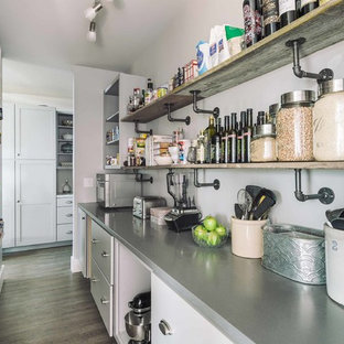 75 Beautiful Industrial Kitchen Pantry Pictures Ideas December 2020 Houzz
