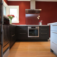 Contemporary Kitchen by Paragon Kitchens