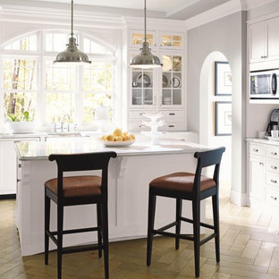 Elegant Kitchen Photo In Other With Gl Front Cabinets White And Paneled Liances