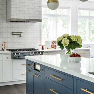75 Most Popular Kitchen With Blue Cabinets And Quartz Countertops