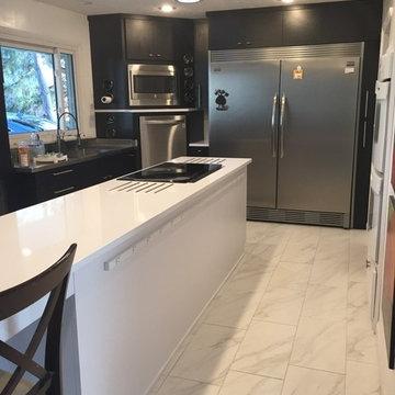 Delp Kitchen Remodel
