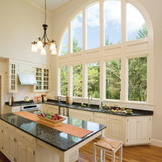Traditional Windows by ASAP Windows and Siding