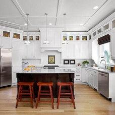 Contemporary Kitchen desire to inspire