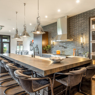 75 Beautiful Contemporary Kitchen Pictures & Ideas | Houzz