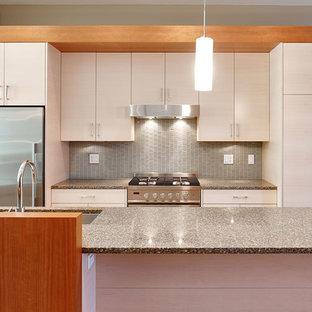 バンクーバーの小さいモダンスタイルのおしゃれなキッチン (アンダーカウンターシンク、フラットパネル扉のキャビネット、白いキャビネット、御影石カウンター、グレーのキッチンパネル、ガラスタイルのキッチンパネル、シルバーの調理設備、セラミックタイルの床) の写真