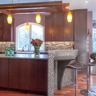 フィラデルフィアの中サイズのアジアンスタイルのおしゃれなキッチン (エプロンフロントシンク、シェーカースタイル扉のキャビネット、濃色木目調キャビネット、クオーツストーンカウンター、マルチカラーのキッチンパネル、シルバーの調理設備、無垢フローリング) の写真