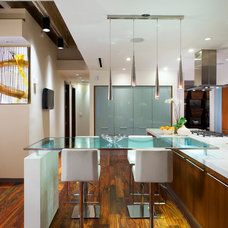 Contemporary Kitchen by Avvici Group