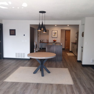Downtown Condo Remodel