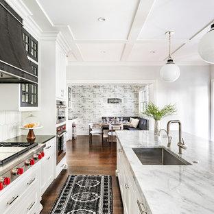 Offene, Große Klassische Küche mit weißen Schränken, braunem Holzboden, braunem Boden, Unterbauwaschbecken, Kassettenfronten, Granit-Arbeitsplatte, Elektrogeräten mit Frontblende, zwei Kücheninseln und schwarzer Arbeitsplatte in Chicago