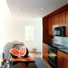 Contemporary Kitchen by DaCruz Segal Architecture llc