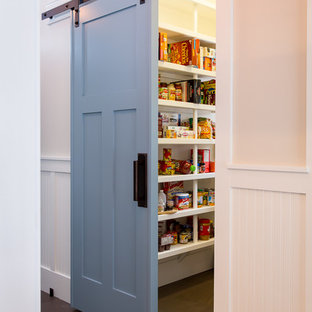 Design ideas for a nautical kitchen pantry in Other with dark hardwood flooring.