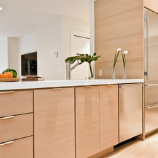 Contemporary Kitchen by Hampton Design