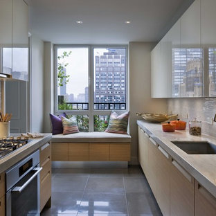 Trendy galley enclosed kitchen photo in New York with stainless steel appliances