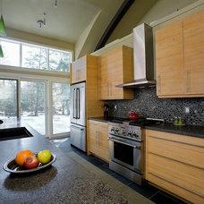 Contemporary Kitchen Eco Kitchen