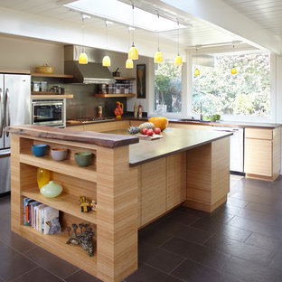 Eichler Lighting Houzz