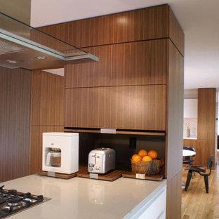 Foto de cocina comedor en L, minimalista, grande, con armarios con paneles lisos, puertas de armario de madera oscura, encimera de mármol, suelo de madera clara y península