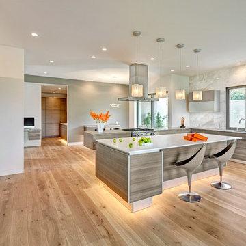 El Dorado Hills Modern Art Home