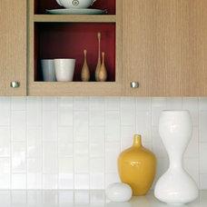 Modern Kitchen by Sharon Portnoy Design